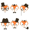 hipster fox icons set vector image