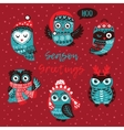 Season Greetings card with owls vector image