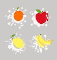 lemon orange apple vector image