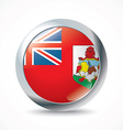 Bermuda flag button vector image