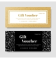 Gift premium voucher coupon template vector image