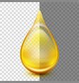 golden oil droplets eps 10 vector image