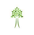 eco-friendly tree symbol vector image