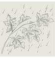 Maple tree branch in the rain vector image vector image