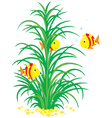 striped tropical fishes and seaweed vector image