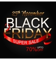 Black Friday 2 vector image