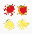 lemon tomato apple vector image