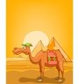 Cartoon Egypt Pyramids vector image