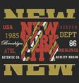 typography sport new york vector image