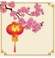 Red Chinese lanterns hanging on a branch of cherry vector image
