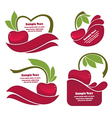 cherry juice and berry labels vector image