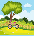 park scene with pink bike by the fence vector image
