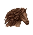 Horse race sport sign Wild equine mustang running vector image