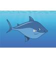 shark ocean vector image vector image