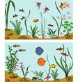 Freshwater aquarium vector image
