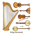 String Musical Instruments vector image
