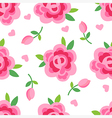 Pink roses seamless background vector image