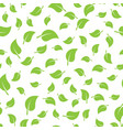 seamless template texture with green leaves vector image