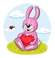 Bunny with heart vector image vector image