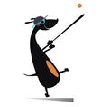 Dog a baseball player vector image