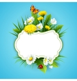 Fresh spring background with grass dandelions and vector image