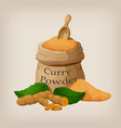 powder of curry in a canvas bag and roots of vector image