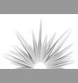 sound wave splash vector image
