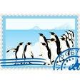Postage stamp with penguins vector image