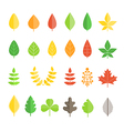Different leaf collection isolated on white vector image