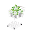 Jasmine Flowers in A Shopping Cart vector image