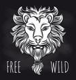 hipster lion on blackboard background vector image