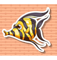 Fancy fish vector image