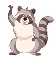 Cartoon cartoon Racoon vector image