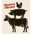 farm animals livestock farming husbandry cattle vector image