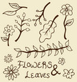 Hand drawn flowers and leaves vector image