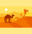 sand desert with camel vector image