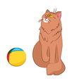 cat and ball vector image