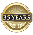 Thirty Five Years Experience Gold vector image