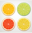 citrus slices vector image vector image