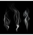 Realistic Smoke vector image vector image