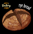 baked rye bread baked bread product vector image