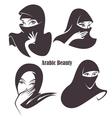 arabian beauty vector image