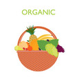 food basket flat template vector image