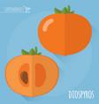 raw diospyros icon vector image