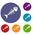 fish bone icons set vector image