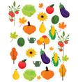 vegetables harvest autumn season pattern vector image