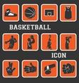 basketball pictogram vector image