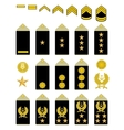 Insignia of the Iranian Army vector image vector image