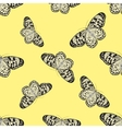 Seamless pattern with butterfly Idea Leuconoe vector image