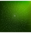 Spider Web With Drops vector image